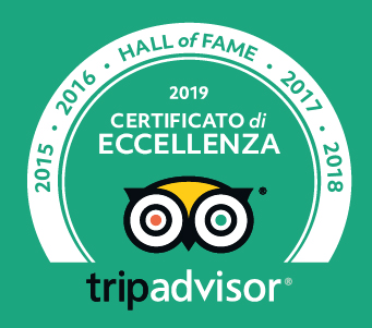 trip-advisor-excellence